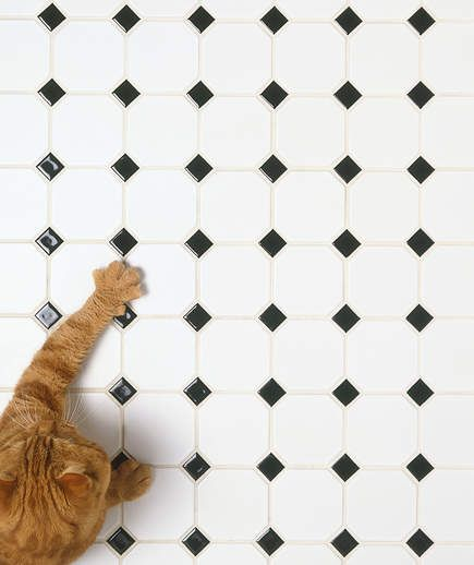 8 No Sweat Tricks To Clean Any Type Of Floor Porcelain Tile
