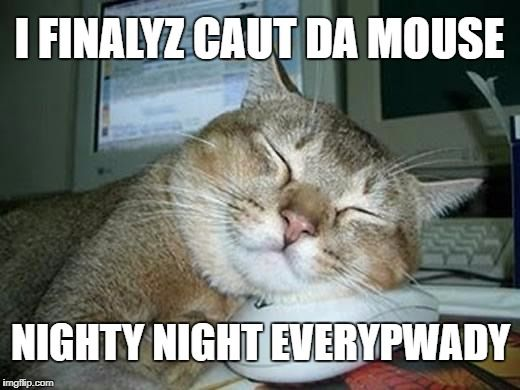 Funny Cat Meme Generator : Sleepy cat meme generator imgflip memes i've made pinterest