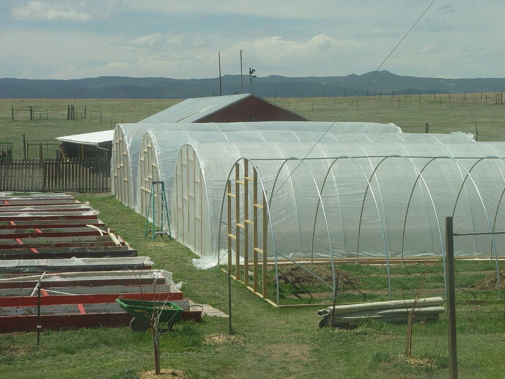 New 20 X 40 Ft Greenhouse Kit Commercial Hoophouse Hightunnel Basil Farms Aquaponics