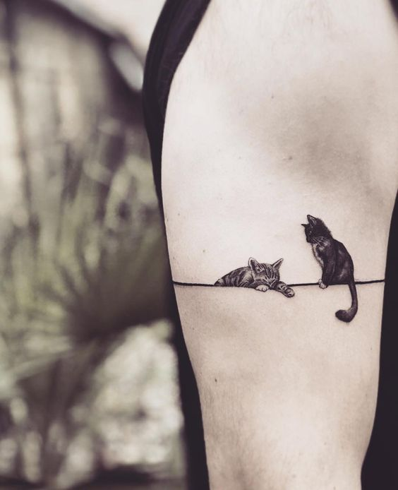 59 Cute Cat Tattoo Ideas And Inspiration Page 35 Of 59 Sciliy Small Animal Tattoos Cute Animal Tattoos Cat Tattoo Designs