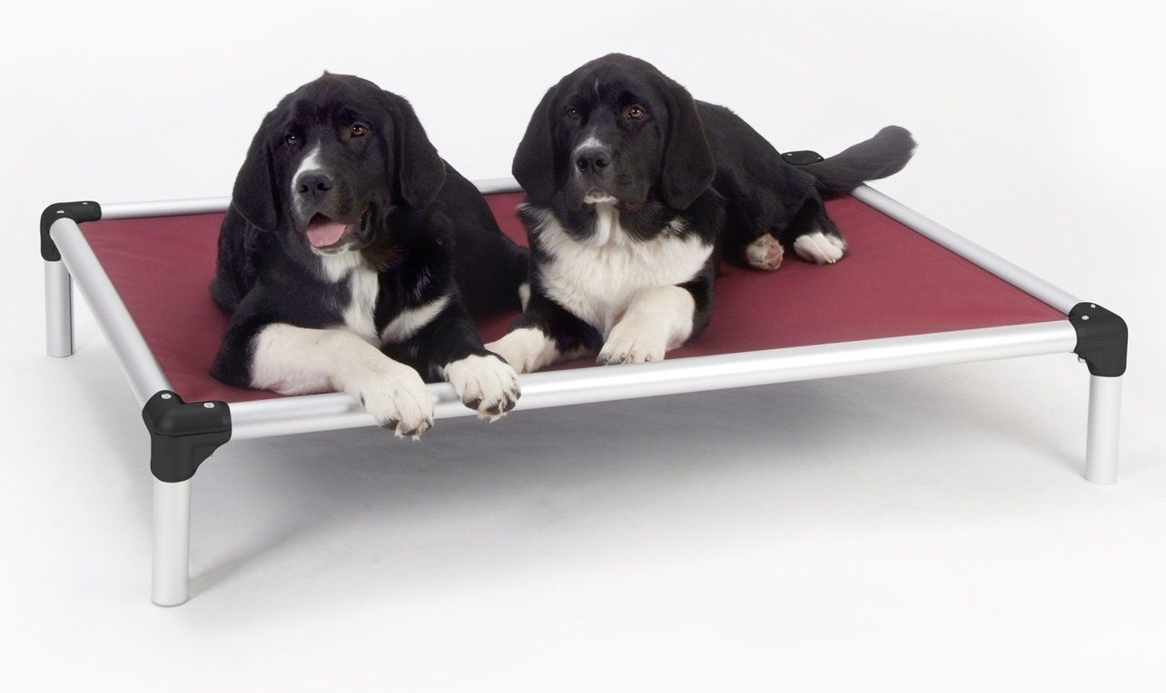 Kuranda Dog Bed All Aluminum Chewproof Great For Outdoor Use
