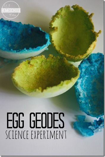 Crystal Egg Geodes Science Experiment 3rd Grade Science Experiments Fun Science Easy Science