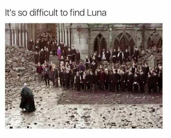 Pin De Yay Existence En Harry Potter And Friends Memes De Harry Potter Hogwarts Luna Lovegood