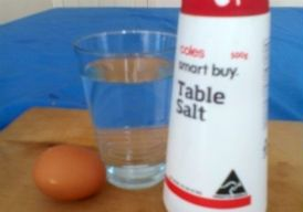 materials for egg float experiment