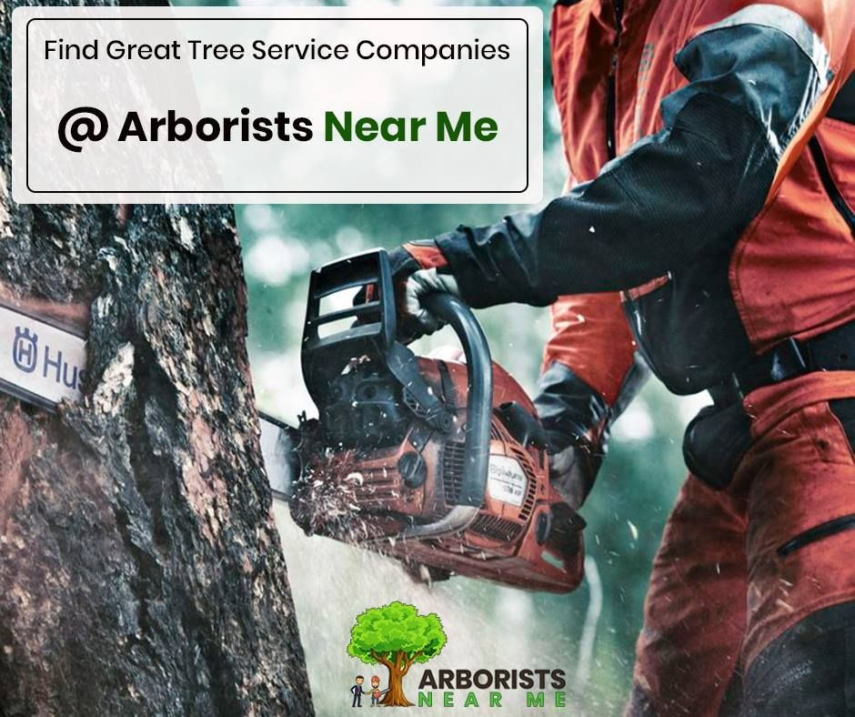 Find Great Tree Service Companies in Kansas City MO with