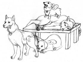 coloring pages huskys - photo#23