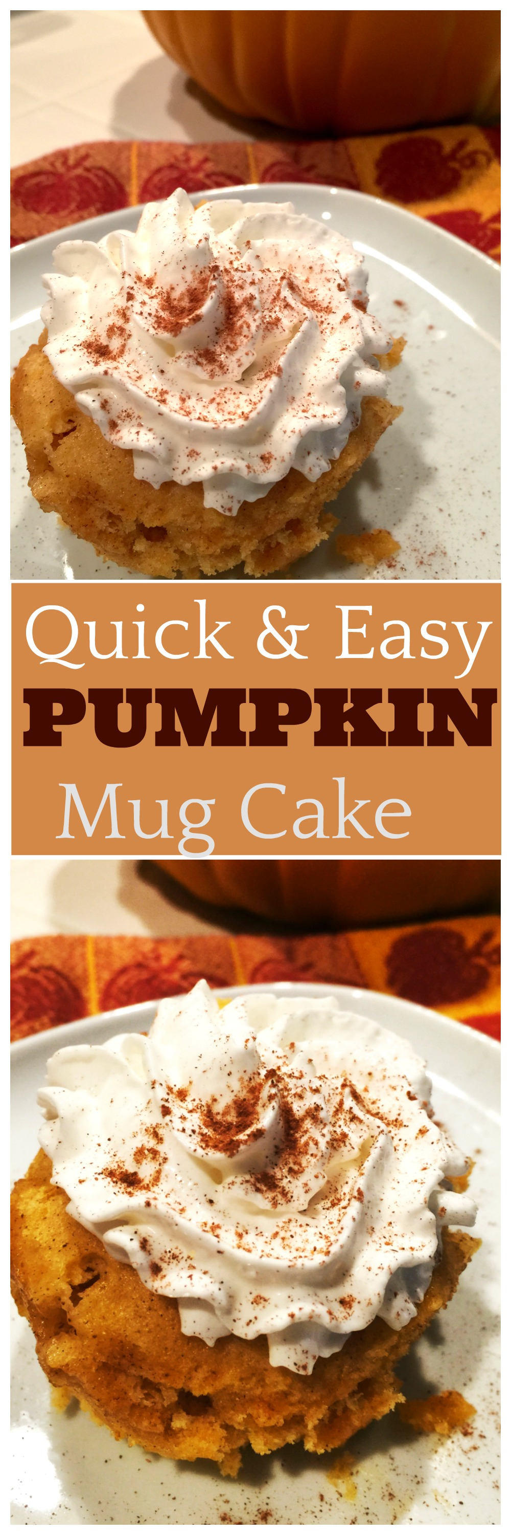 Get your pumpkin fix in this quick and easy pumpkin mug ...