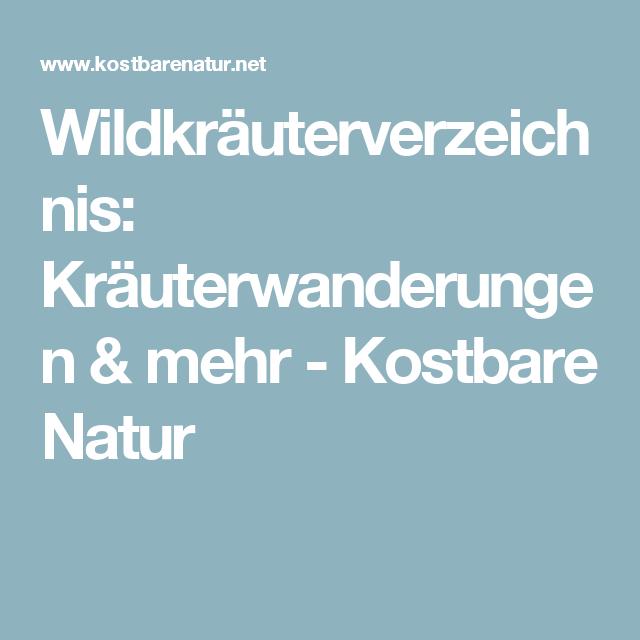 Wildkräuterverzeichnis: Kräuterwanderungen & mehr - Kostbare Natur