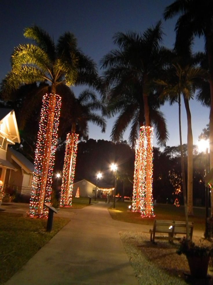 Pin by LLN on yard in 2020 Florida christmas, Fort myers