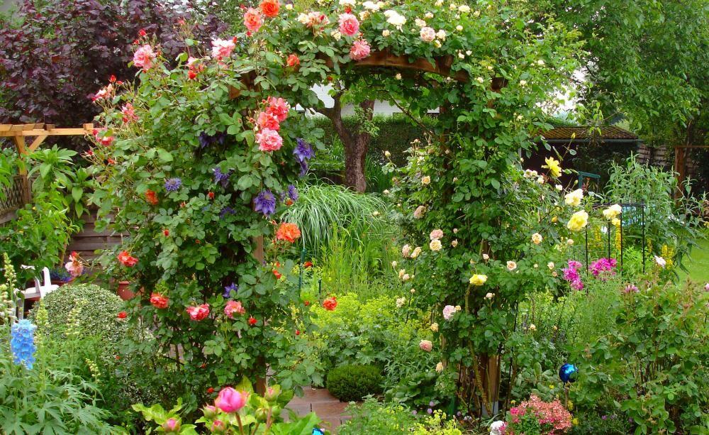 rosenbogen rosen produkte und tipps garten and gardens. Black Bedroom Furniture Sets. Home Design Ideas