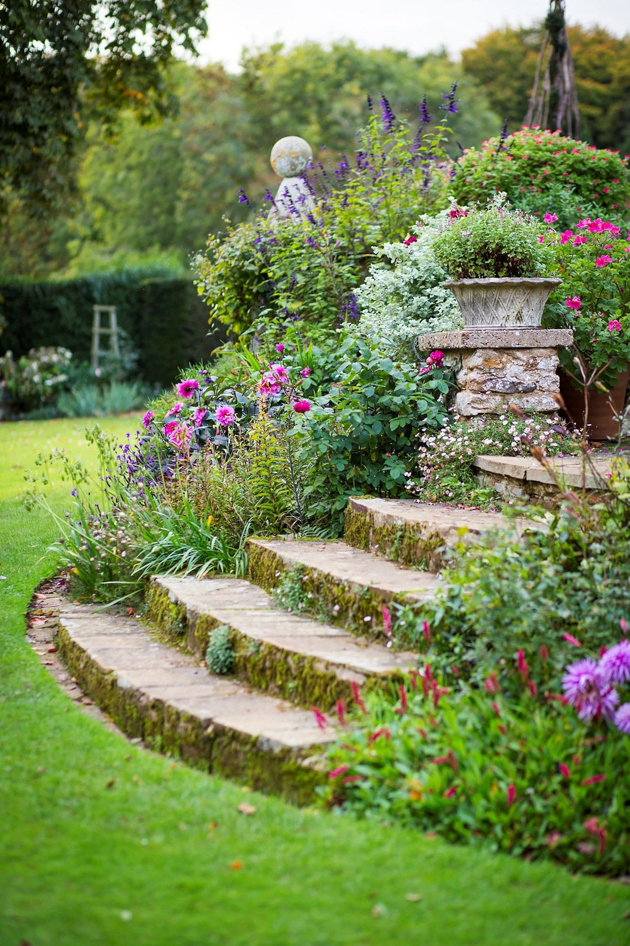 This Is Such A Gorgeous Landscaping Job I Love The Steps And The Mix Of Purple And Pink Flowers Among The Lus Garden Stairs Garden Steps Vintage Garden Decor