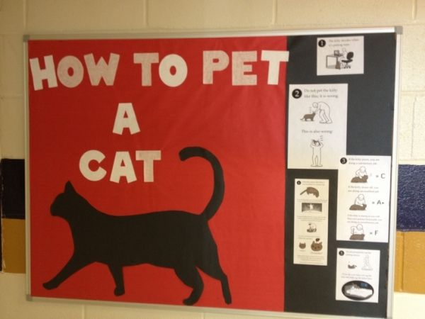 My humorous bulletin board about cats for my resident assistant - Resident Assistant Job Description