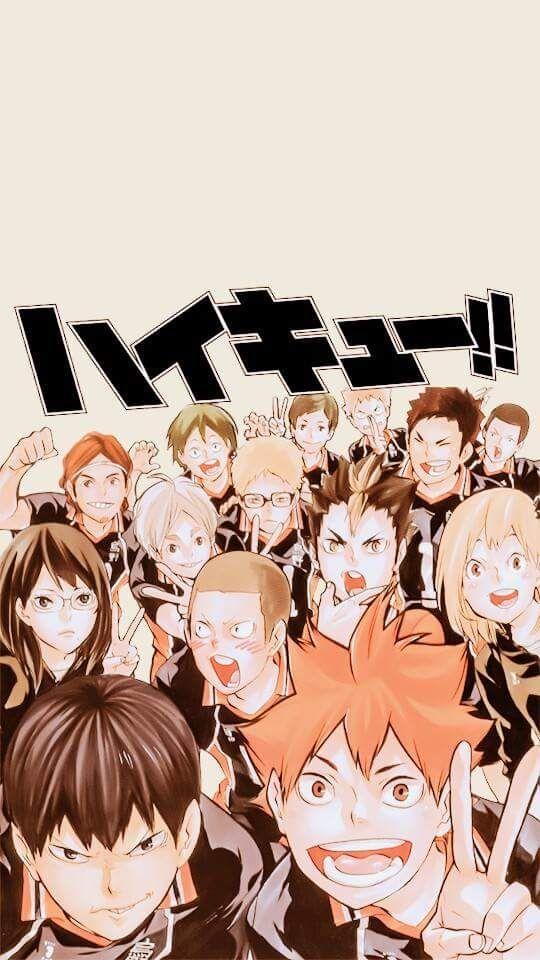 KARASUNO   Anime wallpaper   Haikyuu, Haikyuu anime, Anime