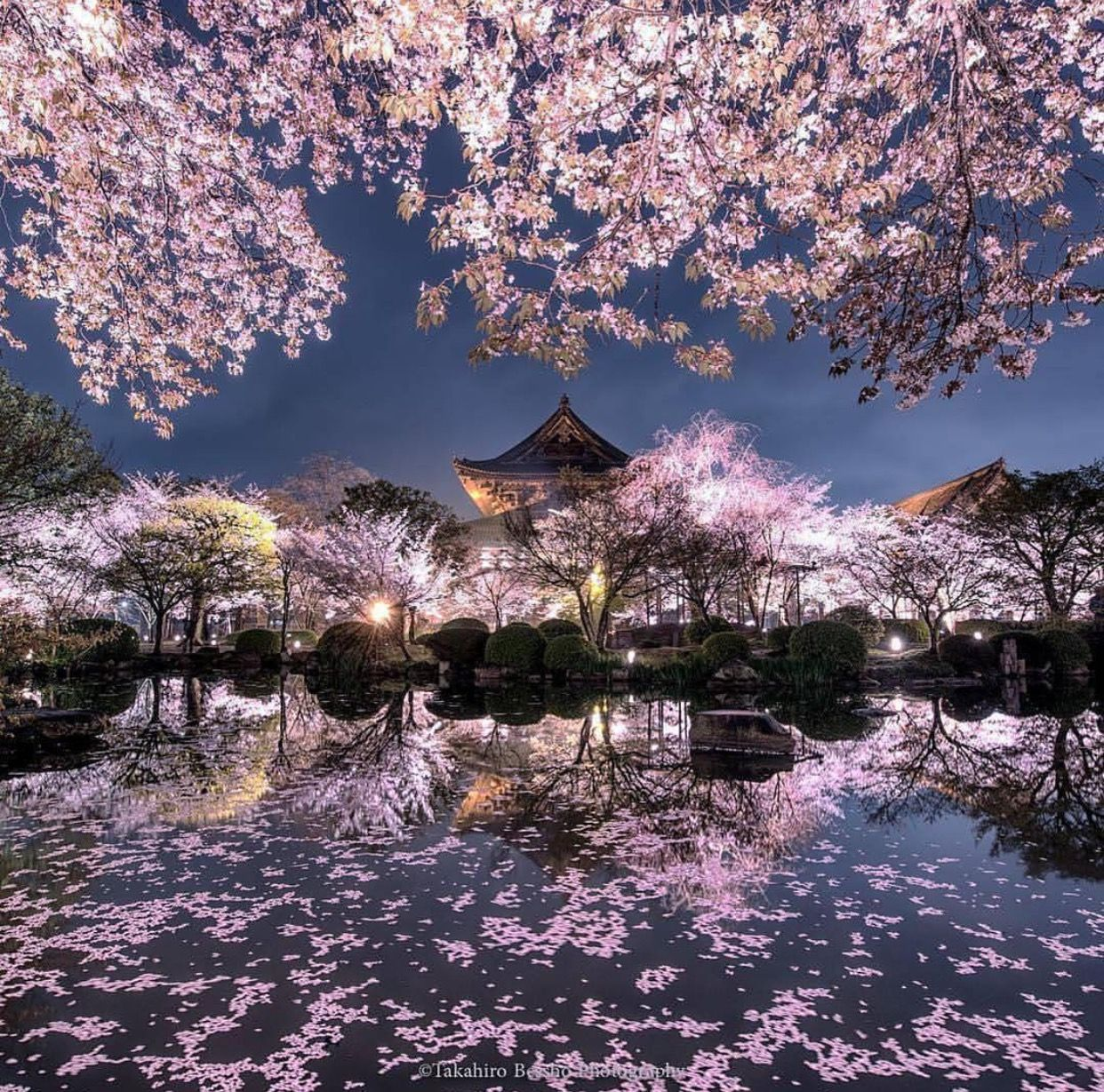 Beautiful Places In Japan Tumblr: Random Beautiful Things In 2019