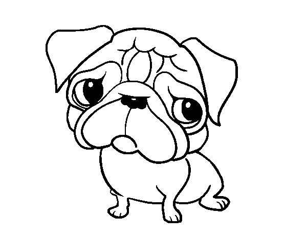 Pug Coloring Pages | Pope, the pug | Pinterest | Pugs, Coloring ...