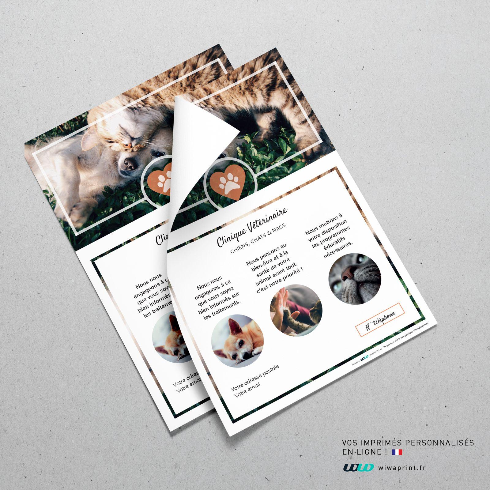 flyer a5 v u00e9t u00e9rinaire classique nature