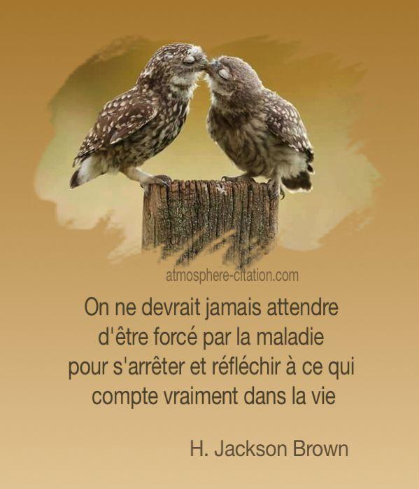Poeme Sur La Maladie Citations Proverbes Sur Maladie