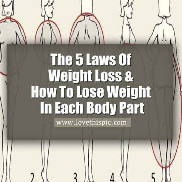 The 5 laws of weight loss how to lose weight in each body part the 5 laws of weight loss how to lose weight in each body part ccuart Image collections