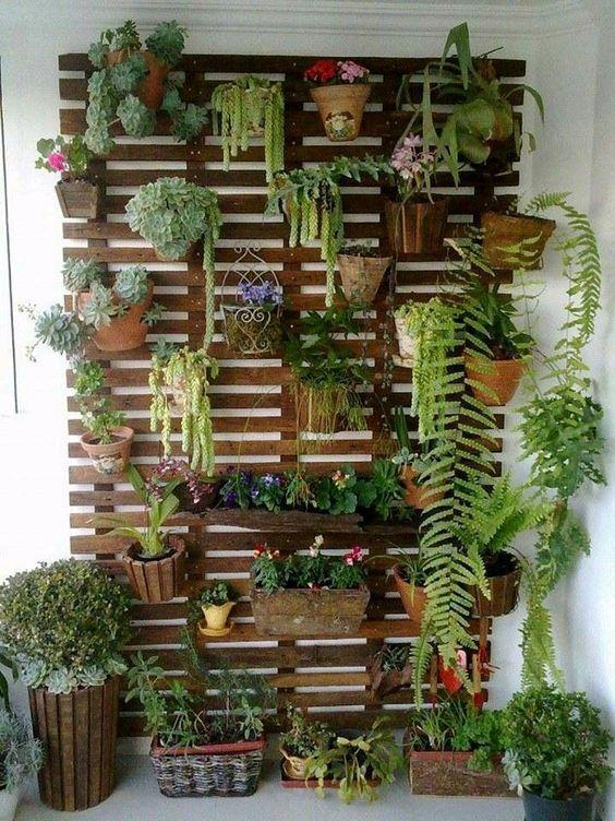 Imagenes con ideas para jardines verticales caseros Garden