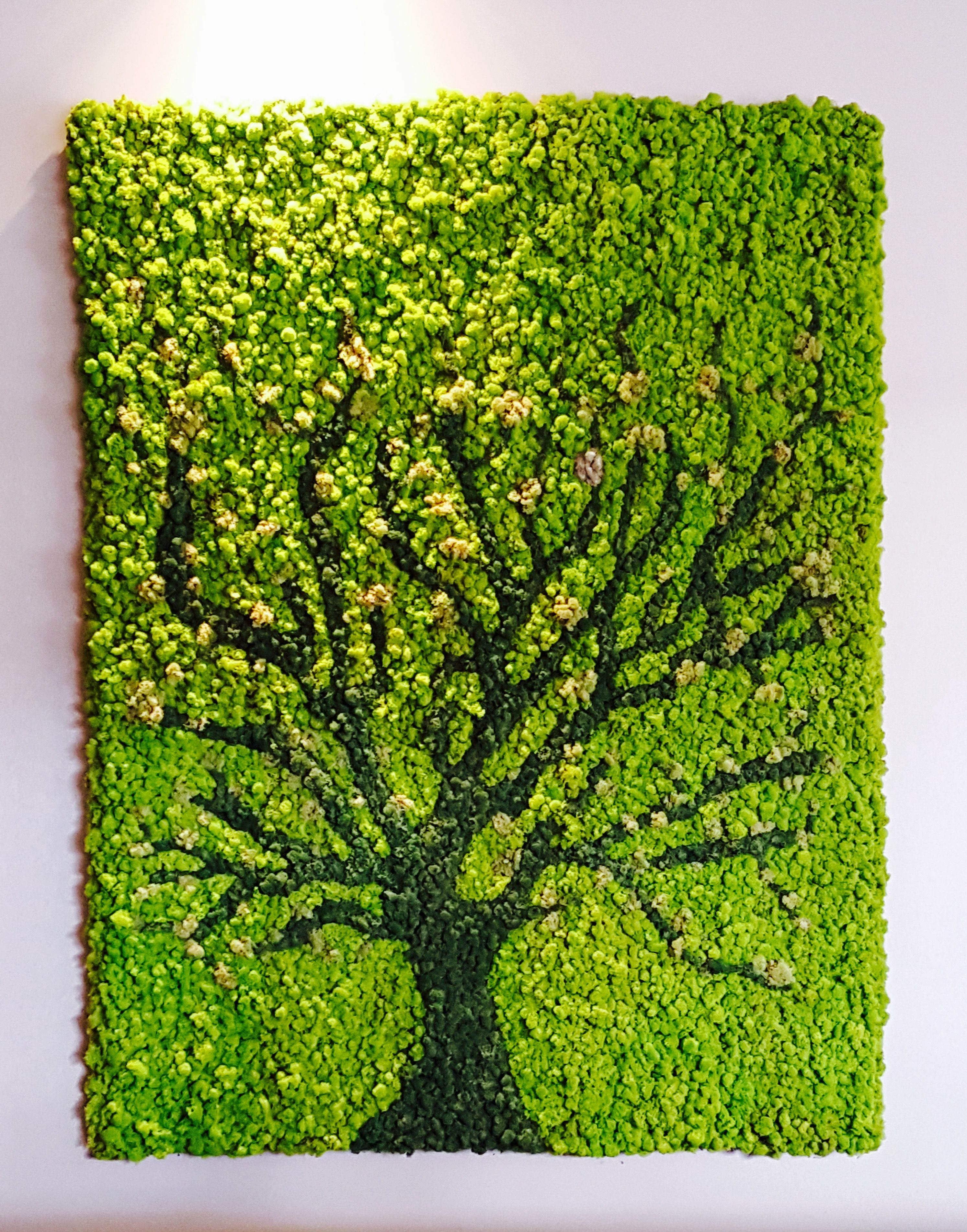 Moss Art Wall