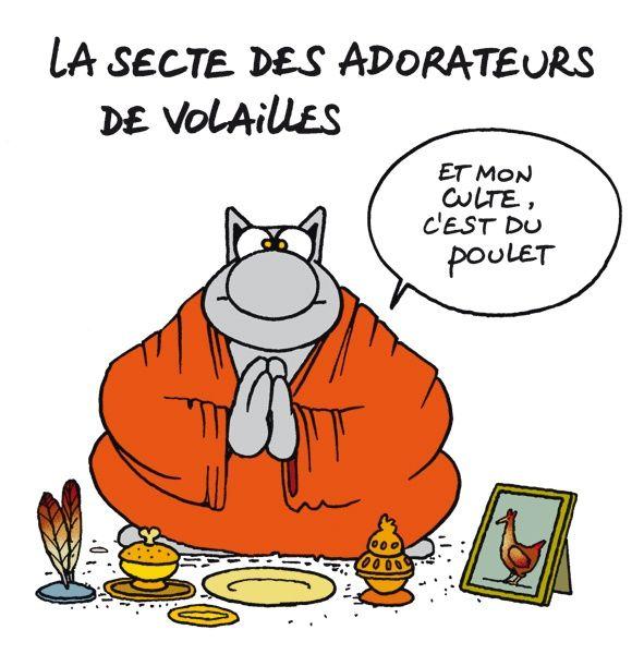Résultat De Recherche D Images Pour Poulet Humour Le