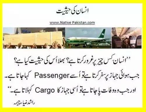 Pin by Jamal Abdul Nasir on Quotes Pinterest Urdu quotes - life coach sample resume