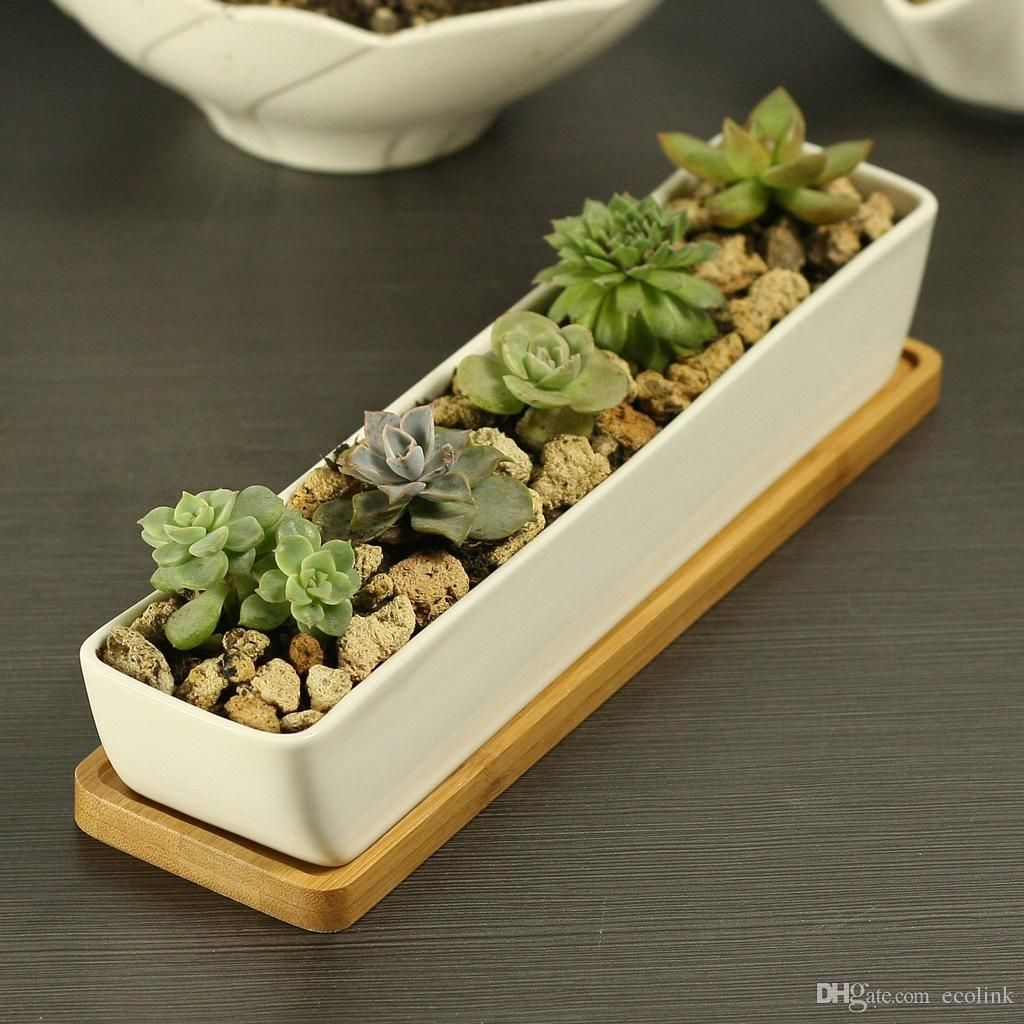 Mini Plant Pots Bulk Free Shipping 17 81 Piece Buy Wholesale Modern Style