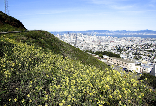 The 10 best date hikes in San Francisco