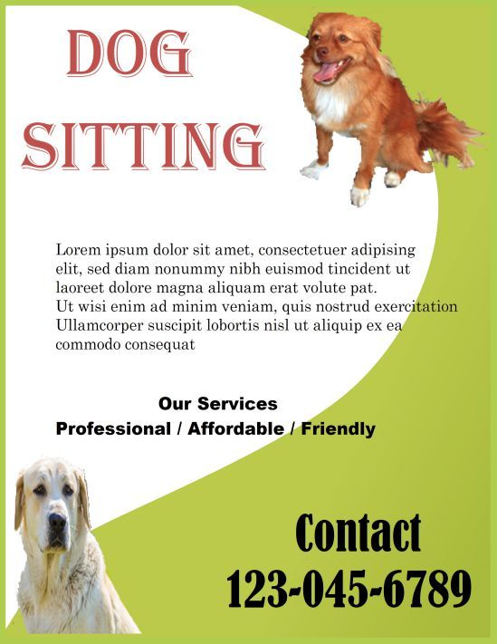 Professional Dog Sitting Templates Dog Walking Flyer Certificate