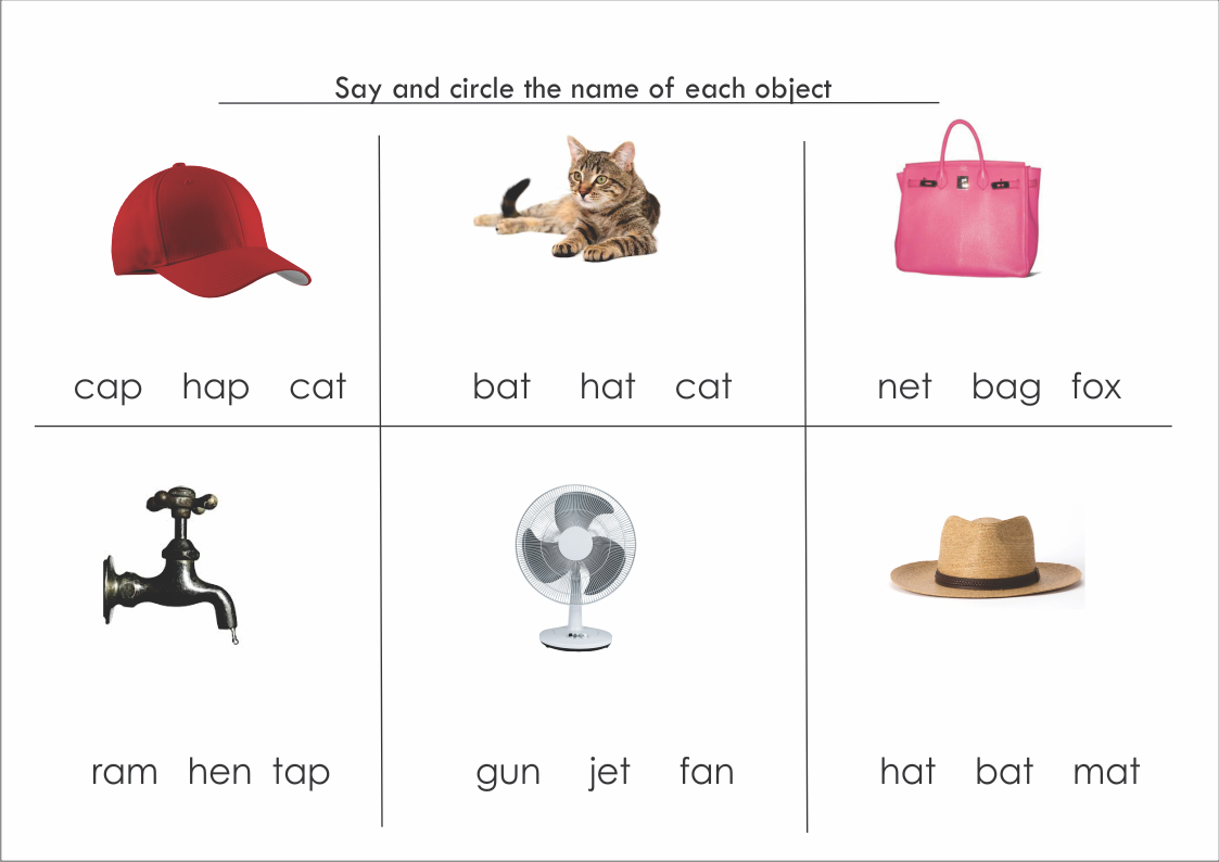 Three Letter Words Cvc Activity Worksheet With Images