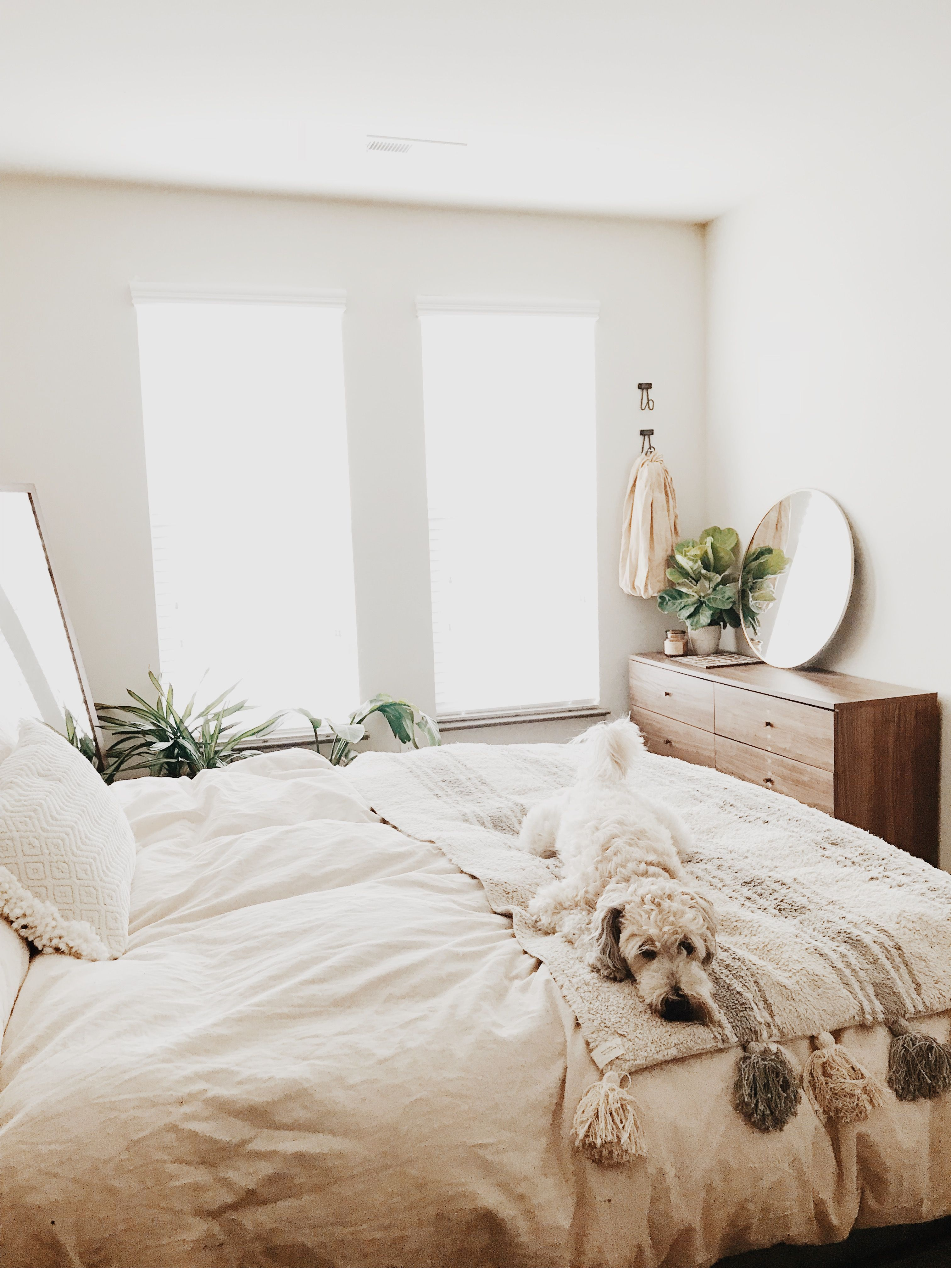 Neutral White Bedroom With Plants Wood Furniture And Lots Of Natural Light Plus A Cute Dog Bedroom Interior Home Decor Bedroom Bedroom Design