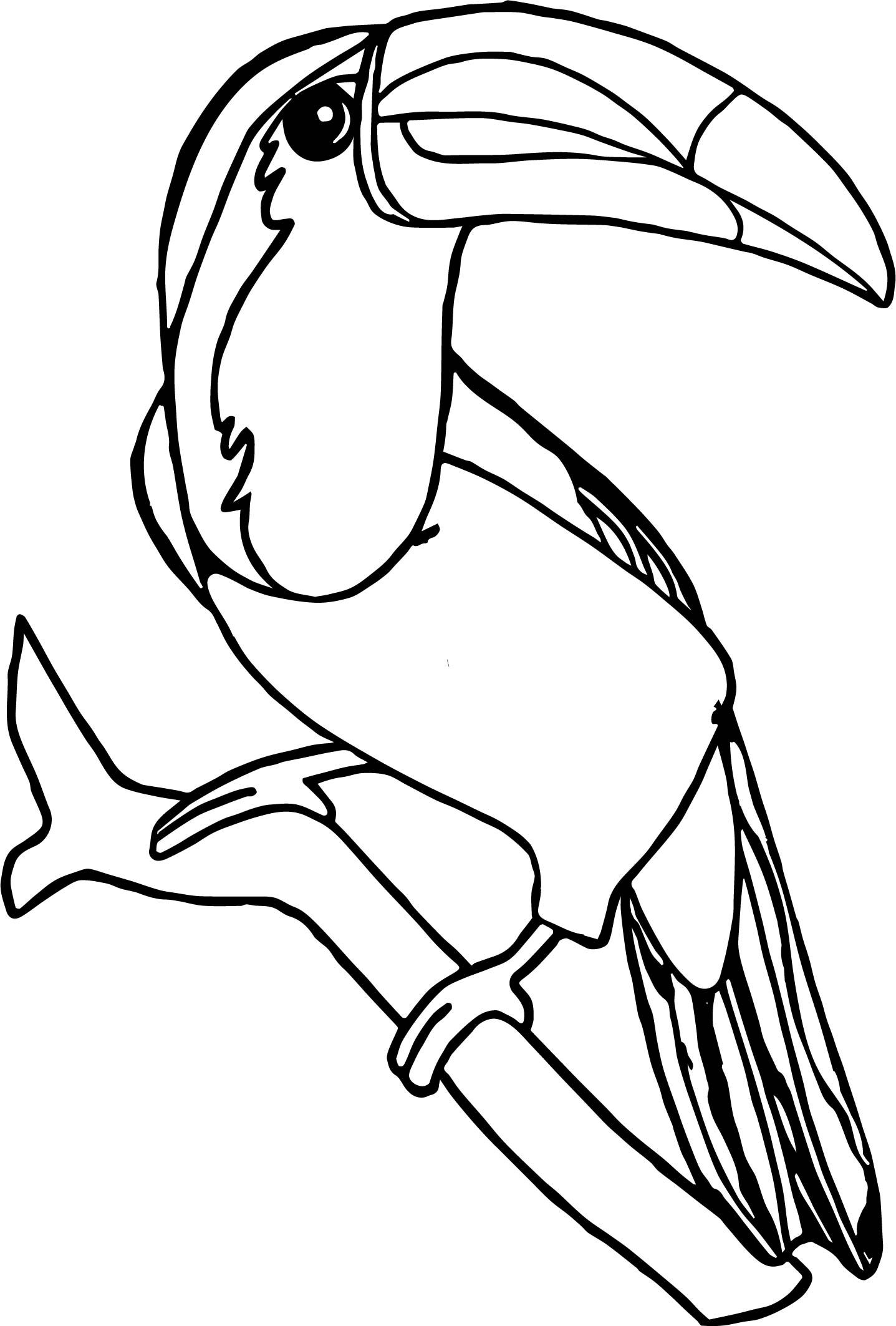 Awesome Rainforest Toucan Bird Coloring Page