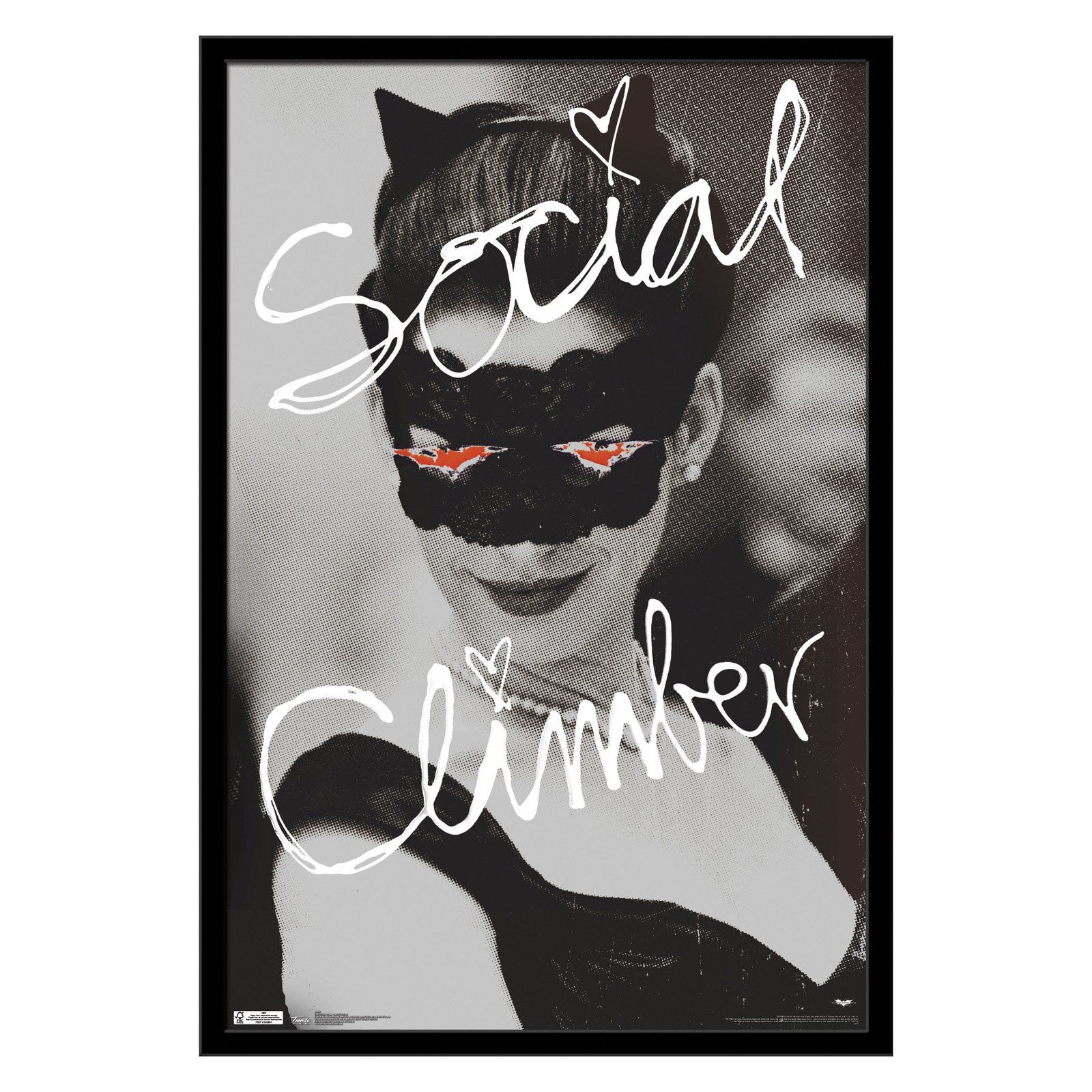 Trends International Dark Knight Rises Social Climber