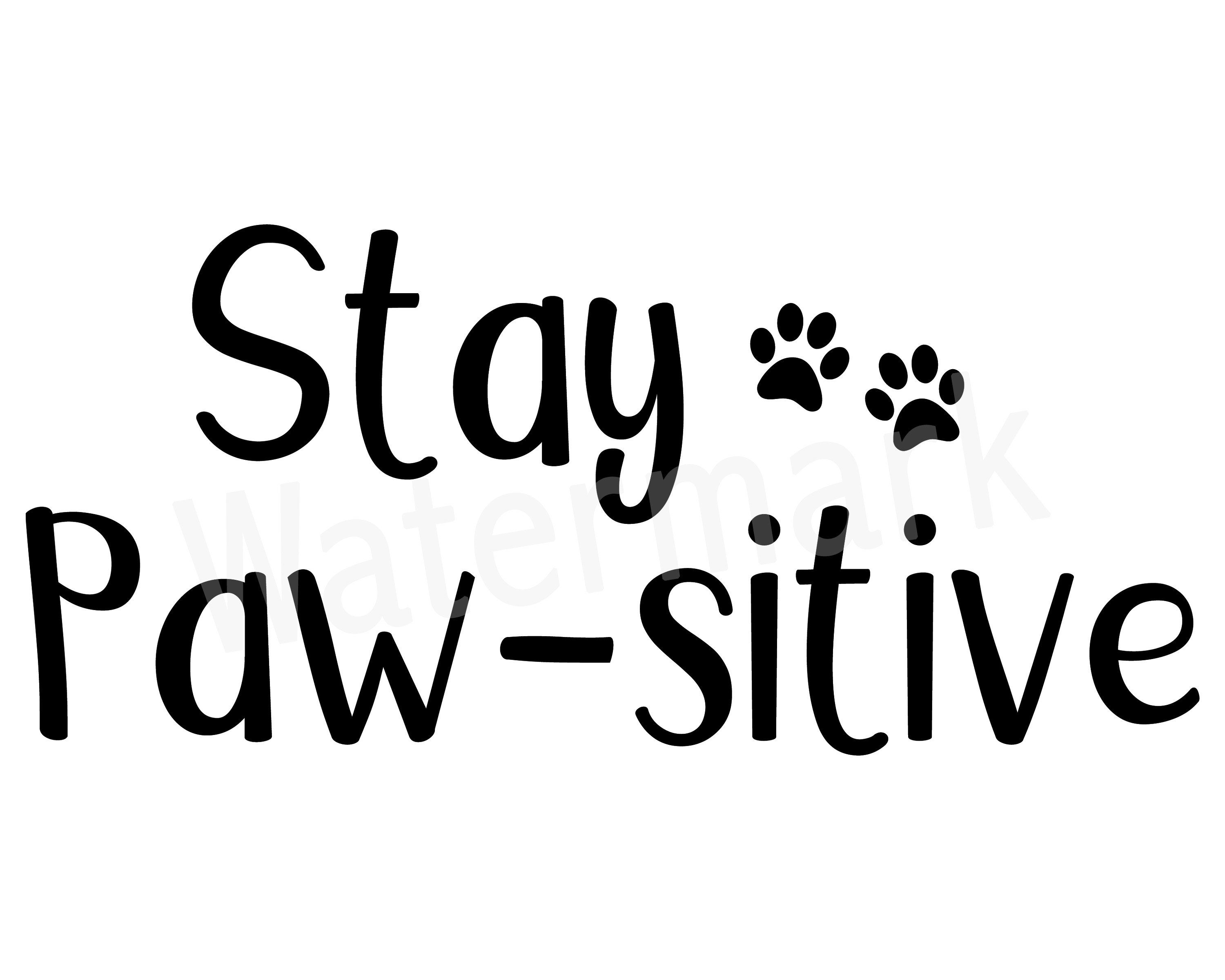 Stay Paw-sitive Pet Quote SVG, Pet Shirt, Funny Dog Mug, Cat Mug, Animal Lover, Car Window Decal Sticker, Commercial Use, Digital Download