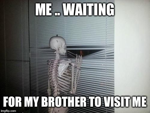 Waiting Skeleton Summer Memes Waiting Meme Brother Quotes Funny