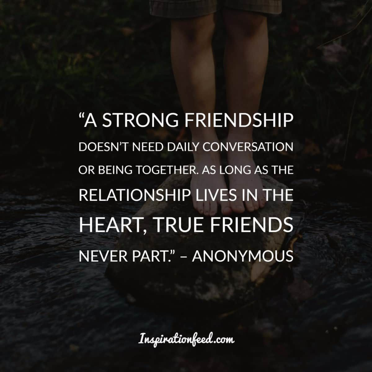 40 Friendship Quotes To Celebrate Your...