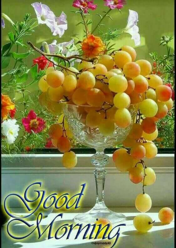 Good Morning Quotes With Fruits: Good Morning Coffee, Good
