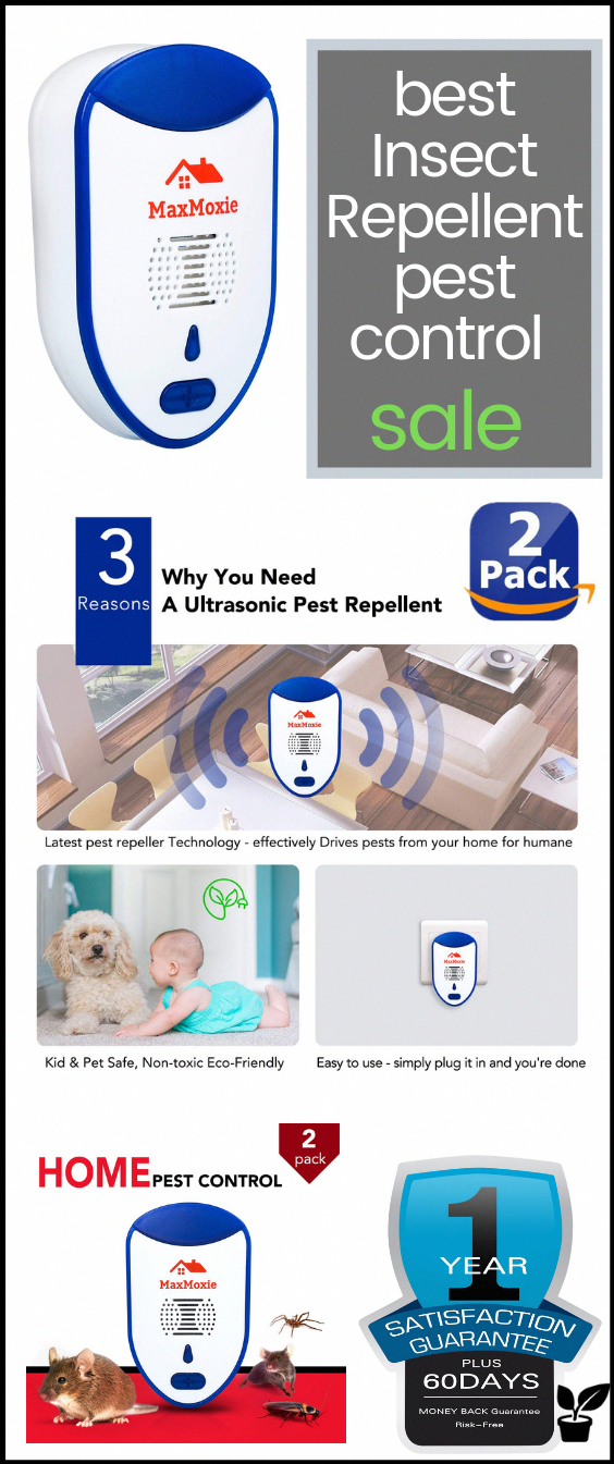 Keep Your Home PestFree This Season effectively repels