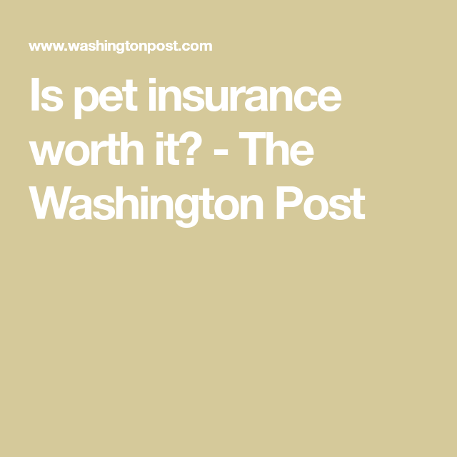 Is Pet Insurance Worth It Pet Insurance Healthy Pets Pets