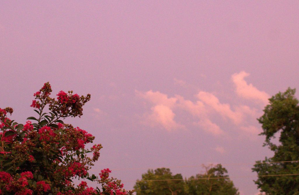 8/12/14 Clouds at sunset Aesthetic grunge, Aesthetic