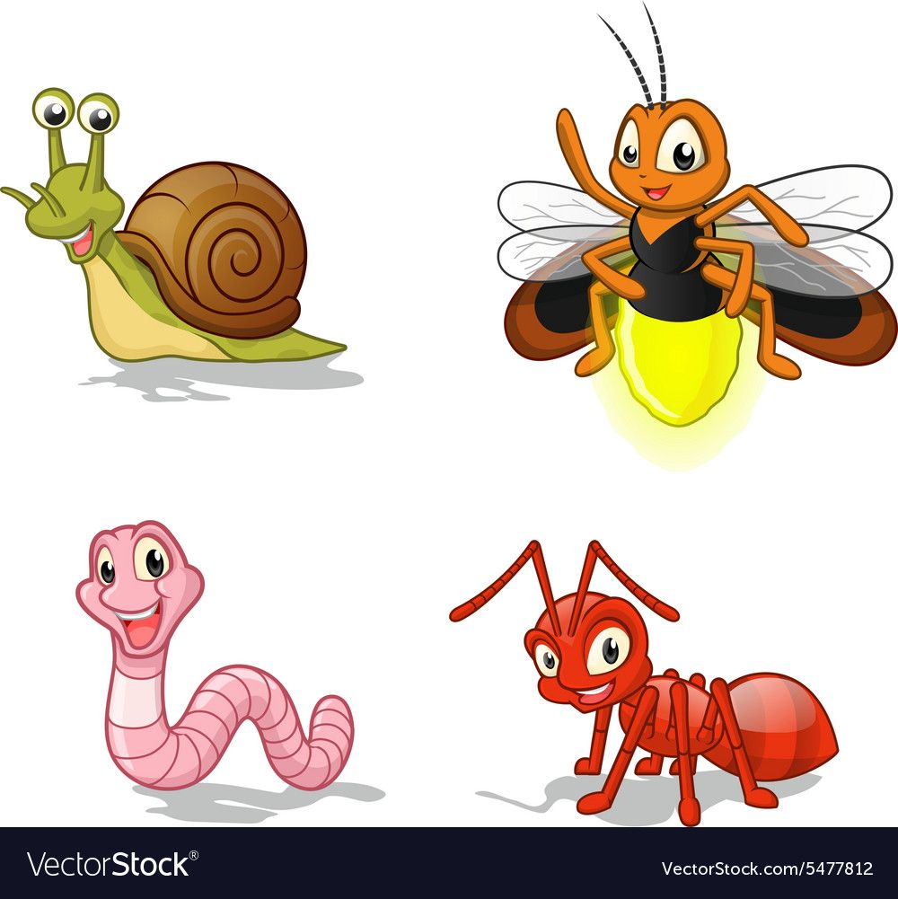 High Quality Insect Cartoon Character Vector Illustration