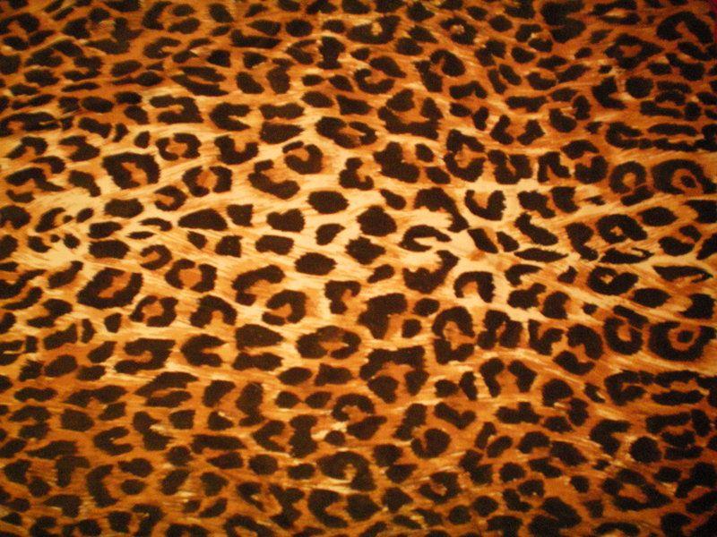Cheetah Print Leopard Print Texture 1 By Danimax Stock On Deviantart Leopard Print Wallpaper Print Wallpaper Textured Wallpaper
