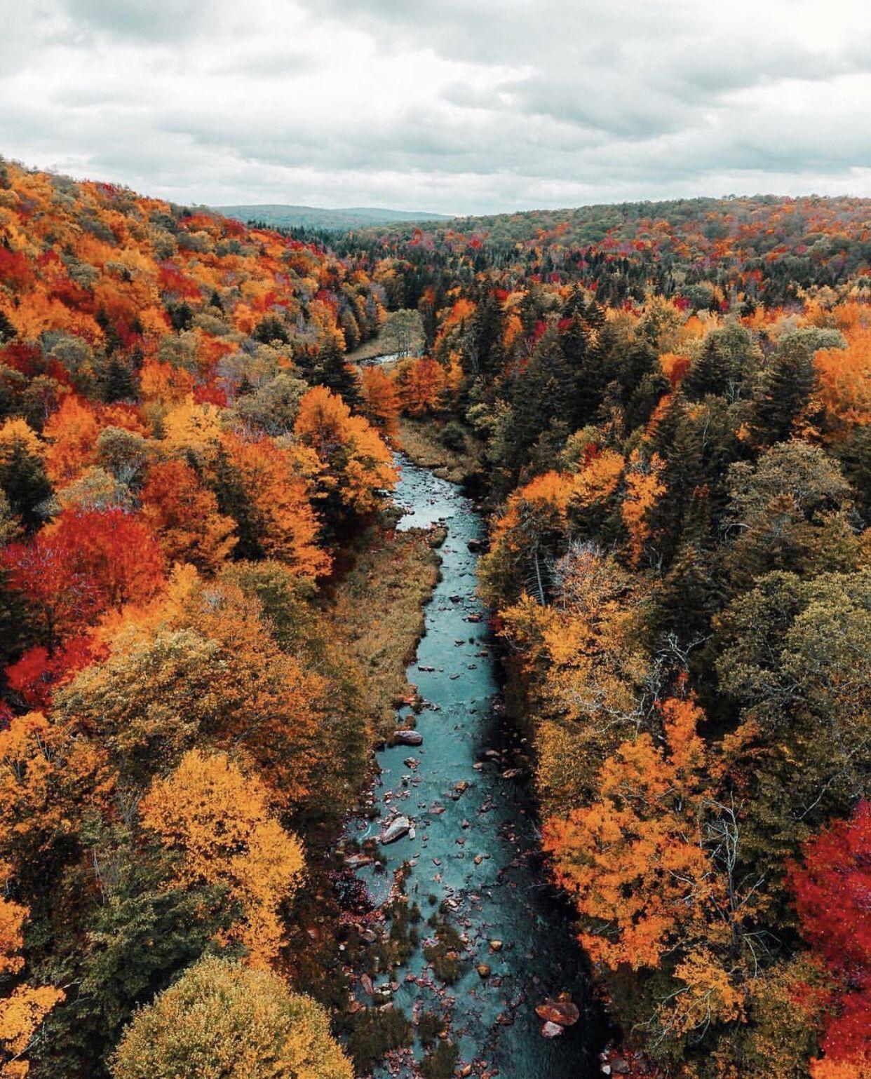 Fall colors #fallcolors
