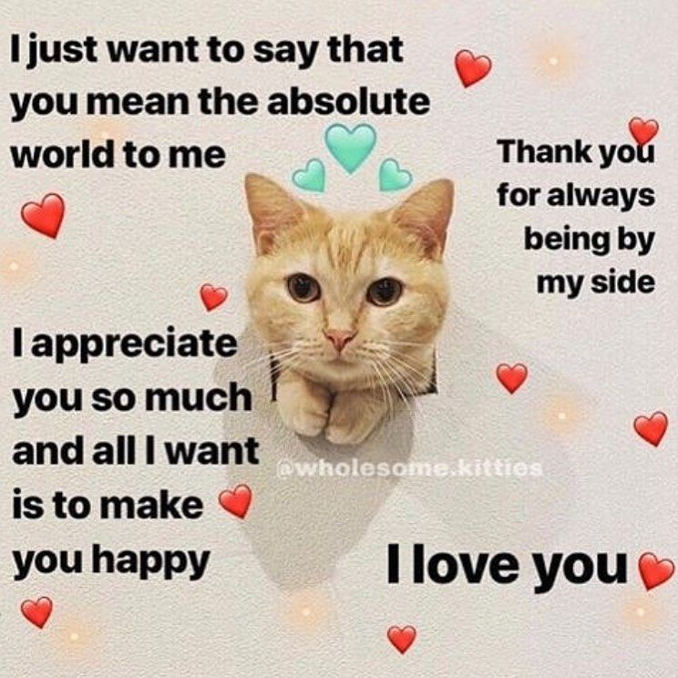 Love Memes Funny I Love You Memes For Her And Him Love You Meme Love Memes Love Memes For Him