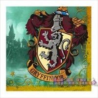 "Harry Potter ""Deathly Hallows"" Small Napkins http://hardtofindpartysupplies.com/Harry-Potter-Birthday-Party-Supplies/Harry-Potter-Deathly-Hallows-Small-Napkins-Cake-Beverage"