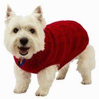 Petsmart 50 Off Dog Coats Scarves Christmas Items More Dog Coats Petsmart Up Dog
