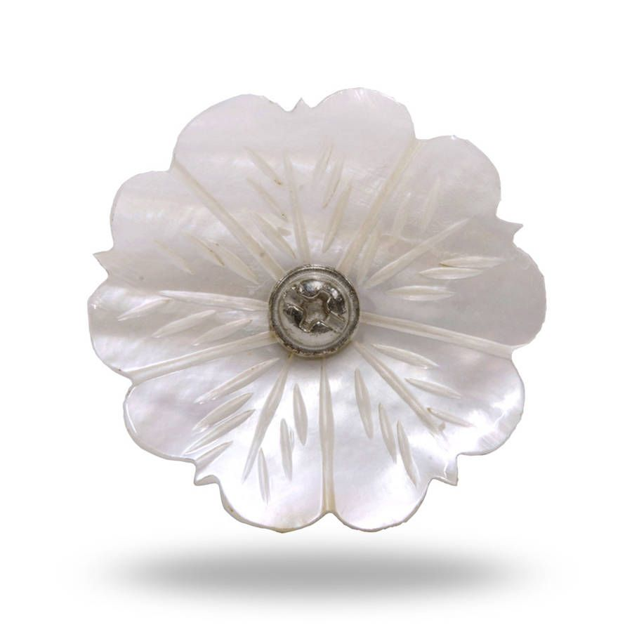 Shell Door Knob Mop Mother Of Pearl | Door knobs, Decorative knobs ...