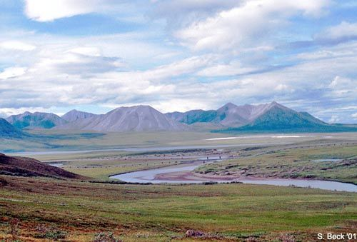 Arctic Tundra - One of the most beautiful places I have ever ...