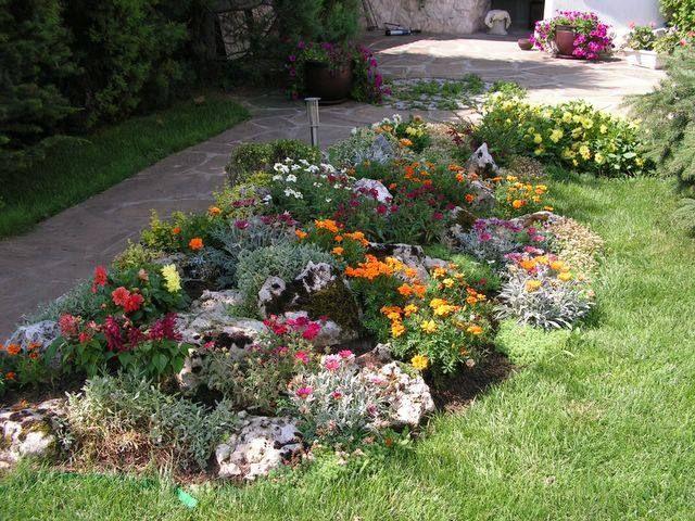 steingarten gestaltungsideen stauden blühende pflanzen | ideen, Best garten ideen