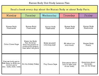 Human Body Unit Study Lesson Plans For K 2nd Grade Science Human